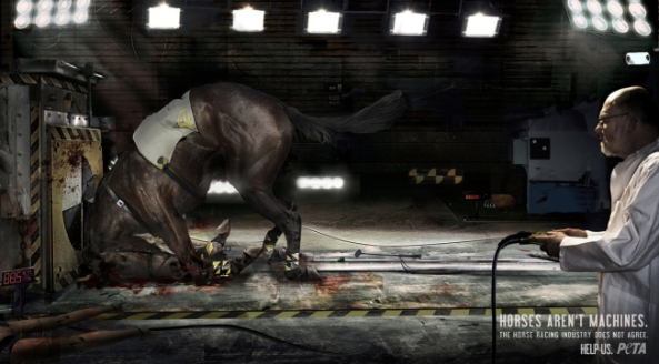 peta - horses aren't machines