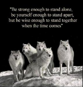 wolves-and-wise