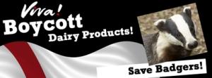british-badger-dairy-boycott
