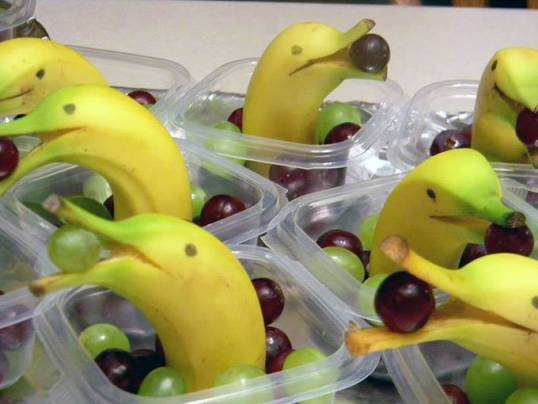 Banana Dolphins - credit-bits-and-pieces