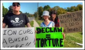 declawing is torture