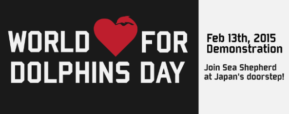 world love for dolphins day