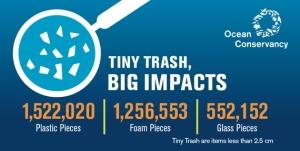 tiny-trash-infographic