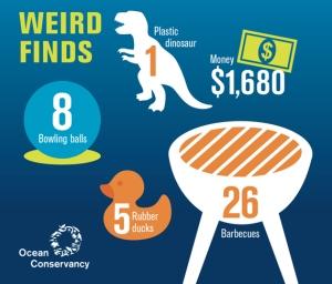 weird-finds-infographic