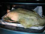 A 100-kg green sea turtle found tied in the trunk of a car in Limón on July 3, 2015. (Courtesy Public Security Ministry)