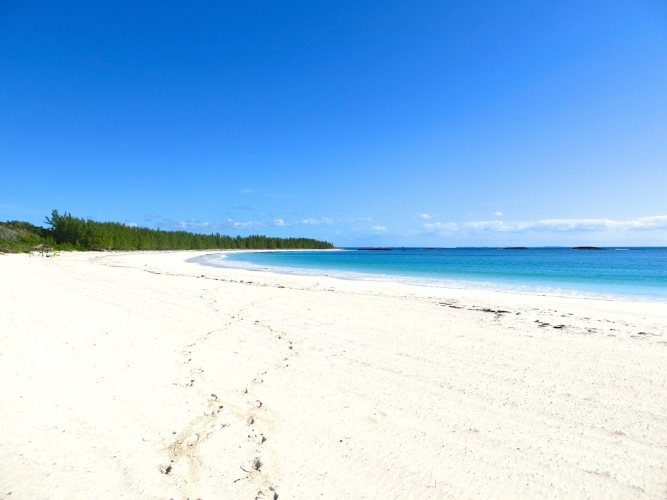 Leave only Footprints - Delphi Beach, Abaco