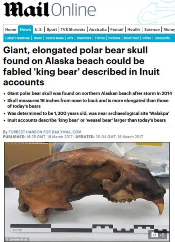 Weasel bear headline with skull graphic 18 March 2017