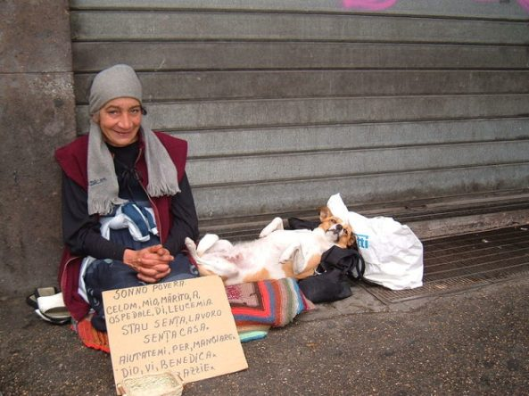 tmp_24504-Dog-and-homeless-Alessandro-Zangrilli-768x576245491747