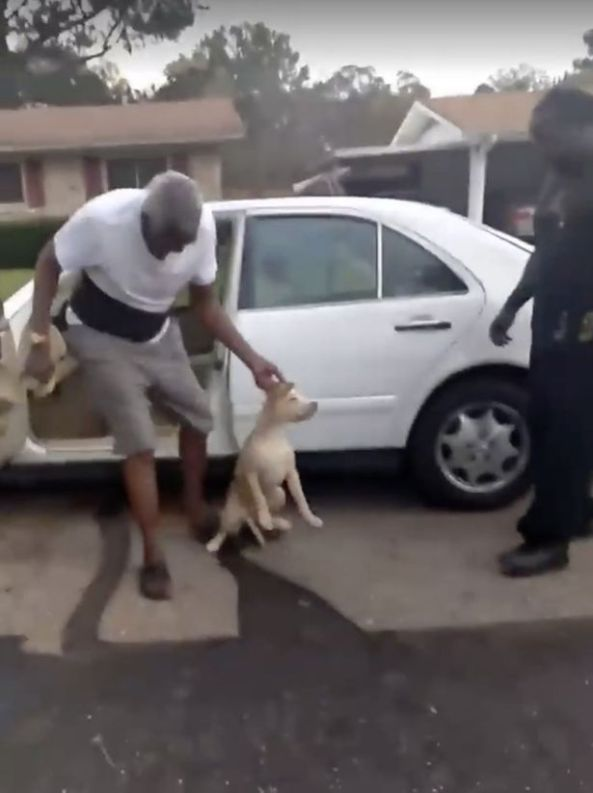 Cruel-laughter-as-man-beating-and-strangling-dog-is-caught-in-shocking-footage