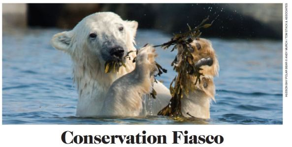 Conservation Fiasco_lead photo_WINTER 2017 RANGE