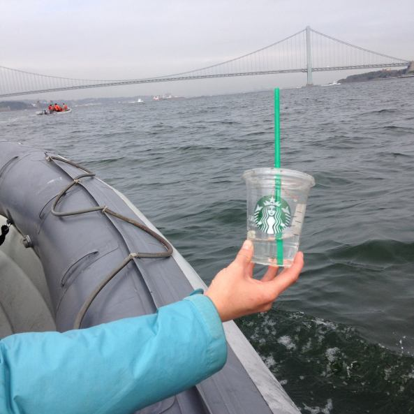 starbucks on the hudson